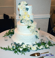 Wedding Cake: Natalie and Matt's wedding at Genesee Grande, Syracuse, NY