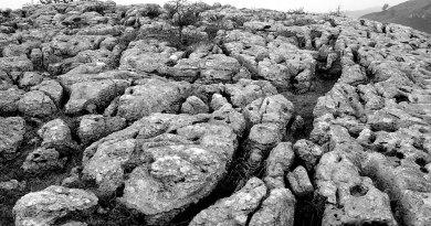 Bryn Alyn limestone pavement black & white landscape