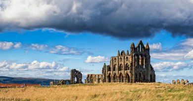 Landscape of Whitby Abbey
