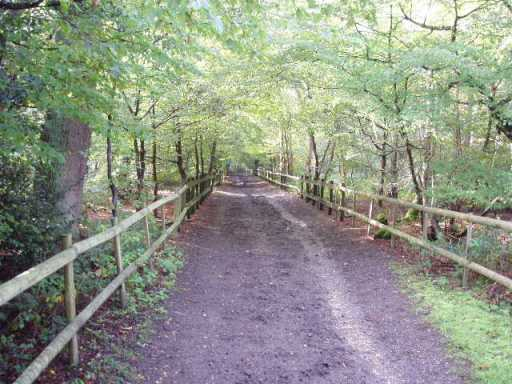 Bridleway through Whitewebbs Park in Enfield from Pete's Walks)