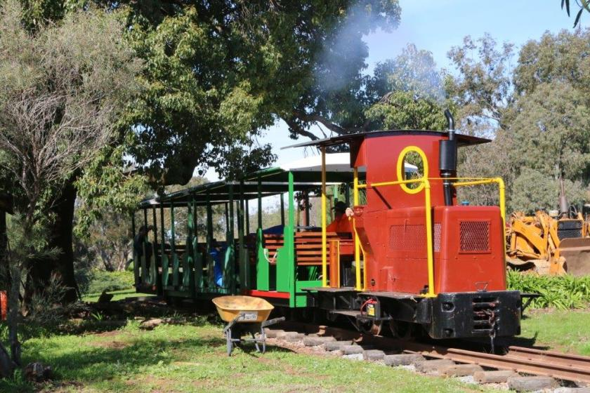 2016-3432: Ben slowly but surely shunted the train under the arched bow of the Kurrajong tree and over the level crossing