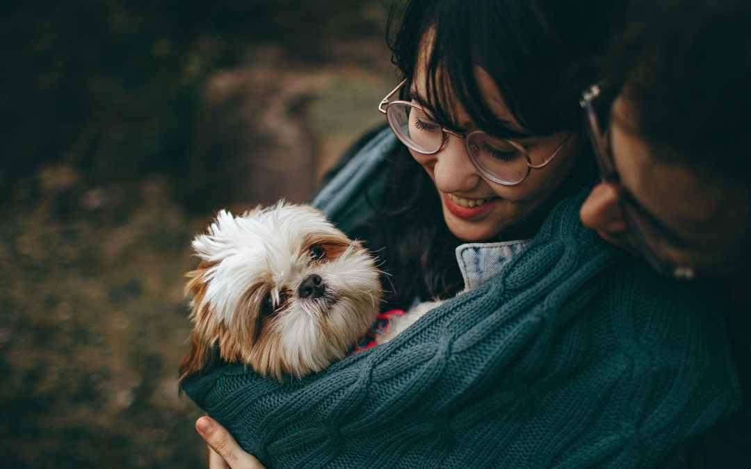 Como evitar que seu pet adoeça com a chegada do outono
