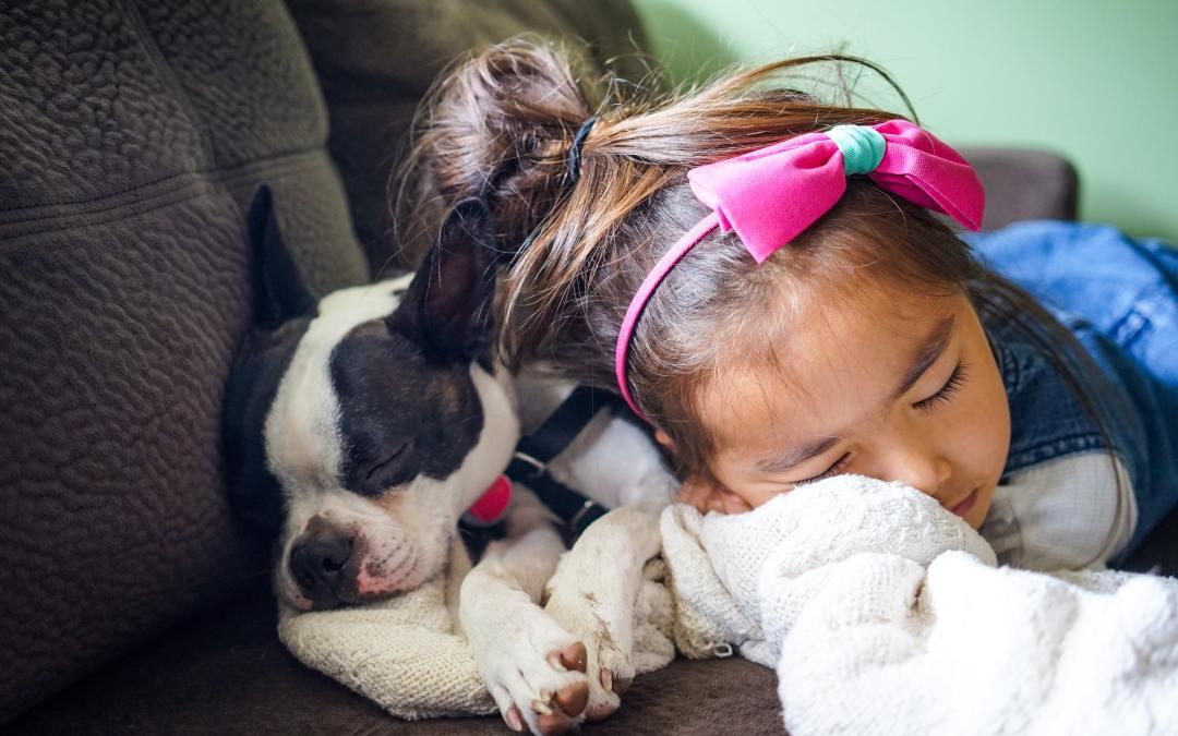 Cães podem ajudar o desenvolvimento psicológico das crianças