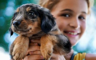5 benefícios de adotar um cão quando você tem uma criança
