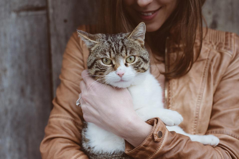Picture of a woman in a leather jacket holding a cat
