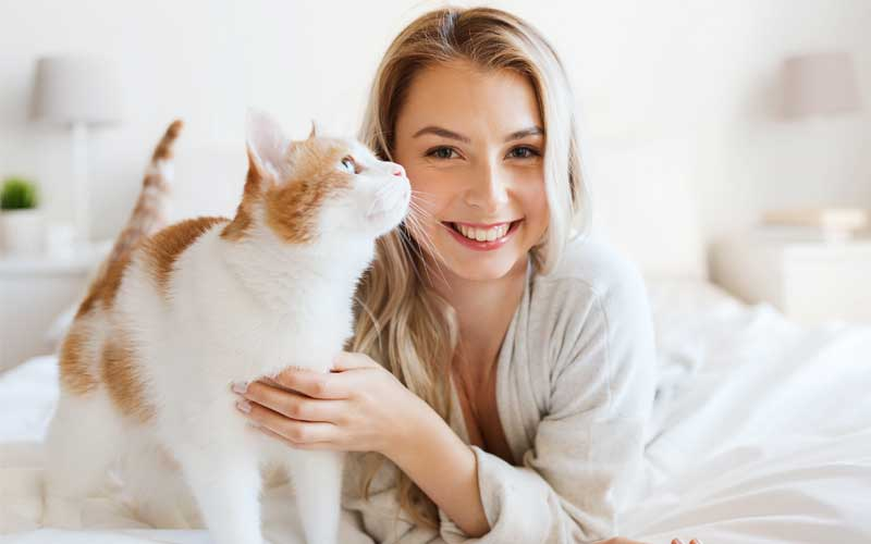 Picture of orange and white cat with a woman