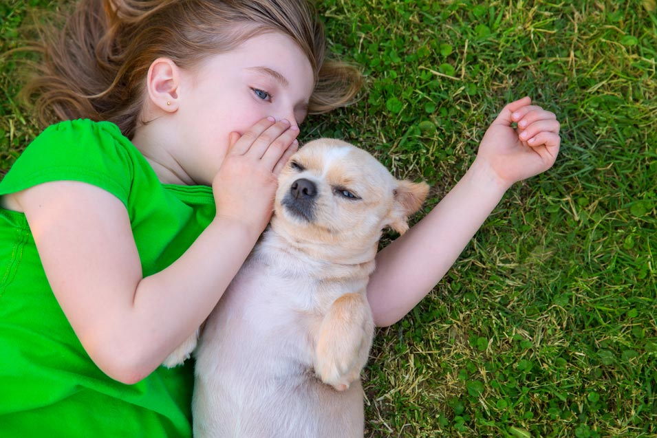 Picture of dog and girl laying on the grass