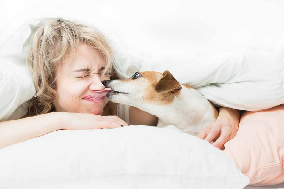 Picture of dog licking a woman face