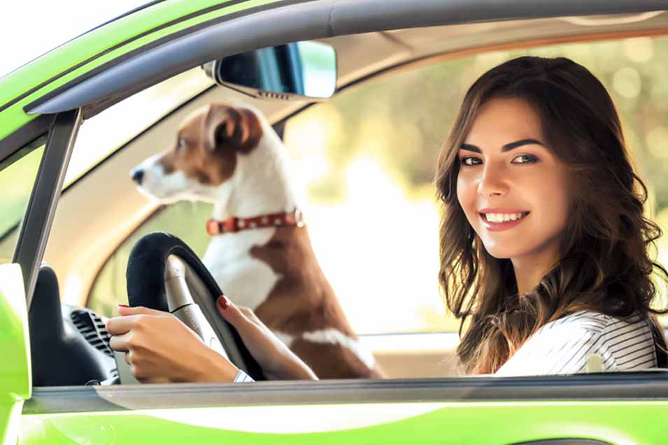 Picture of woman driving with a dog
