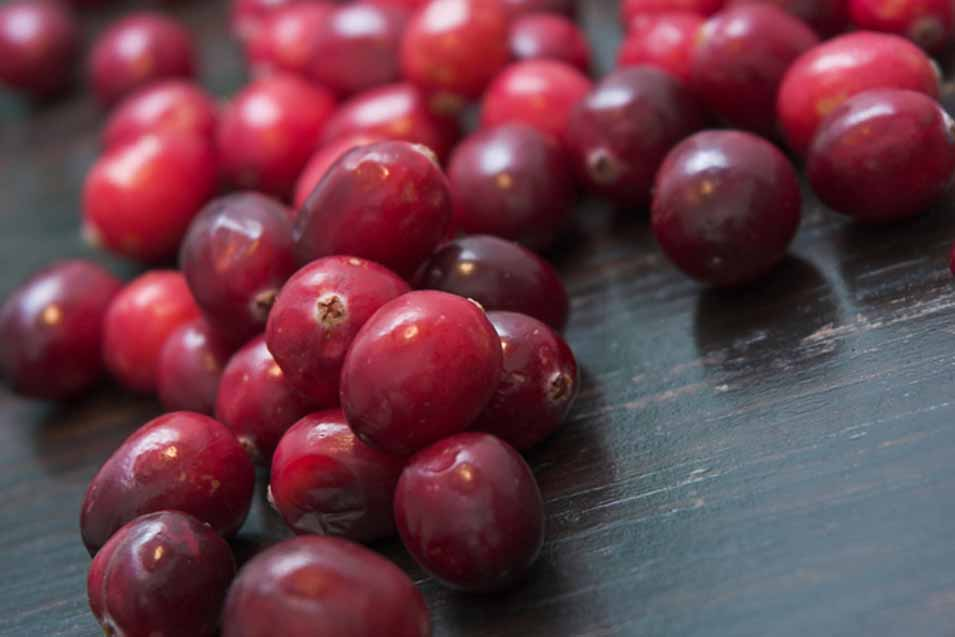 Picture of cranberries