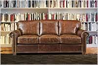 Picture of a Cat Friendly Leather Sofa
