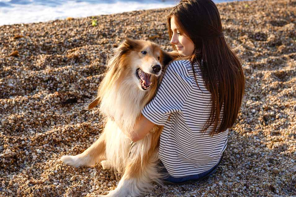 Picture of a Collie sitting with a woman on the beach