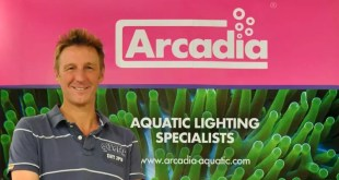 Monkfield, aquatic, reptile