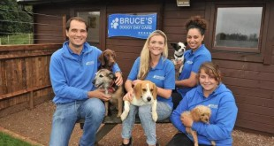 Bruces Doggy Daycare