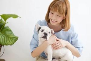 犬の趾間膿皮症ケア