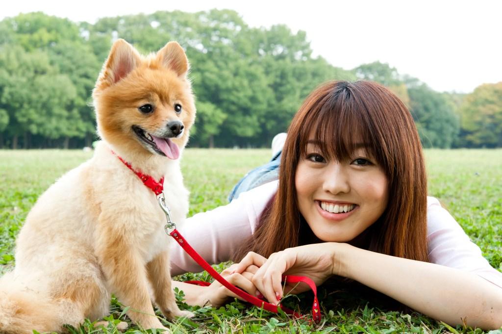 ペット保険の確認事項