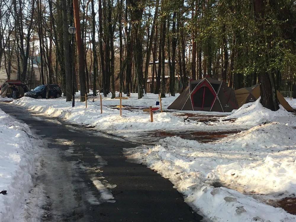 犬とキャンプ山中湖 雪中キャンプ