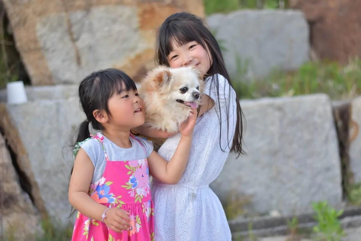 犬を抱きしめている小さな二人の女の子