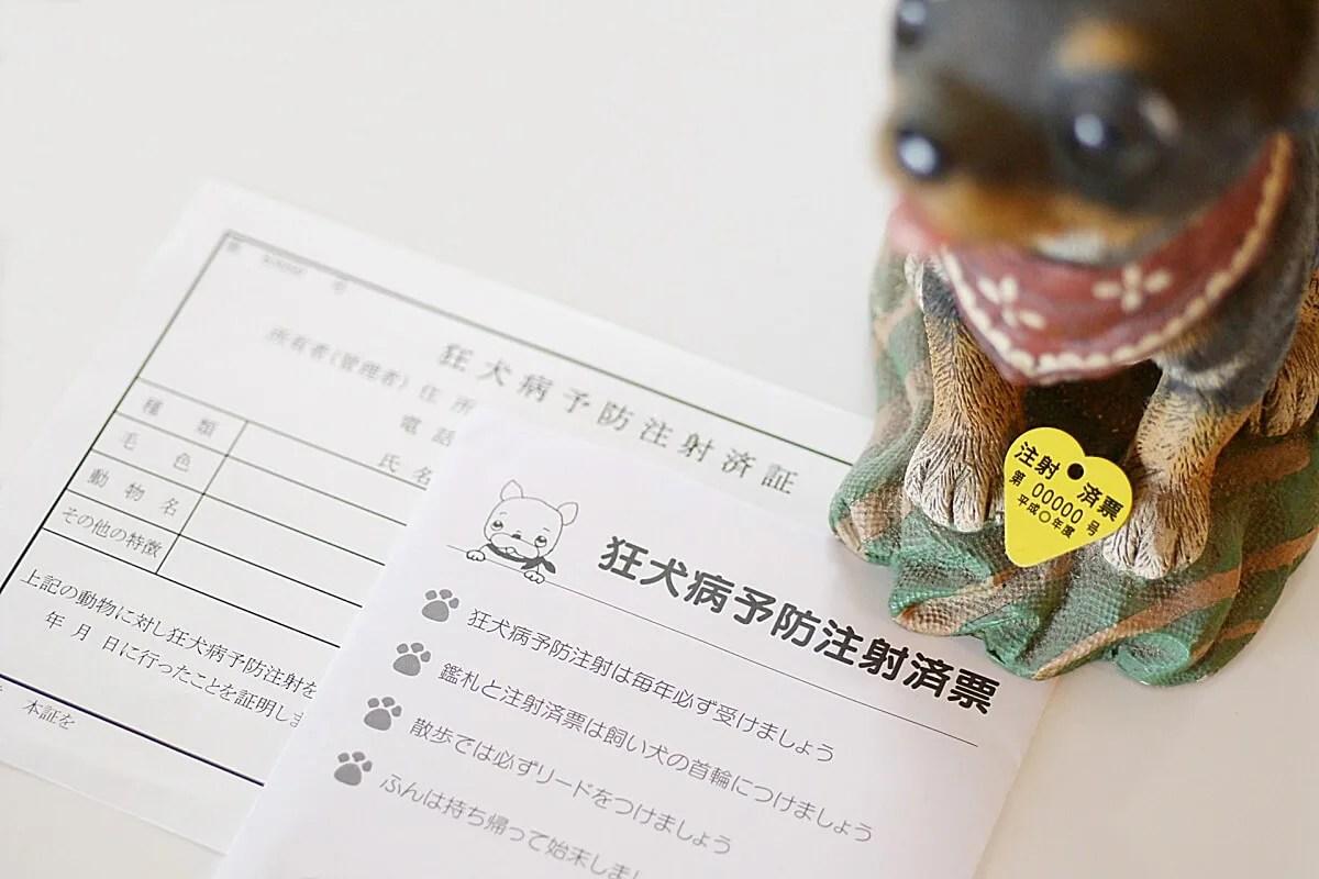 狂犬病予防のワクチン接種証明書と犬の置物