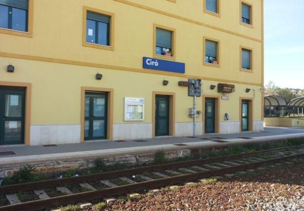 Mucca investita da un treno