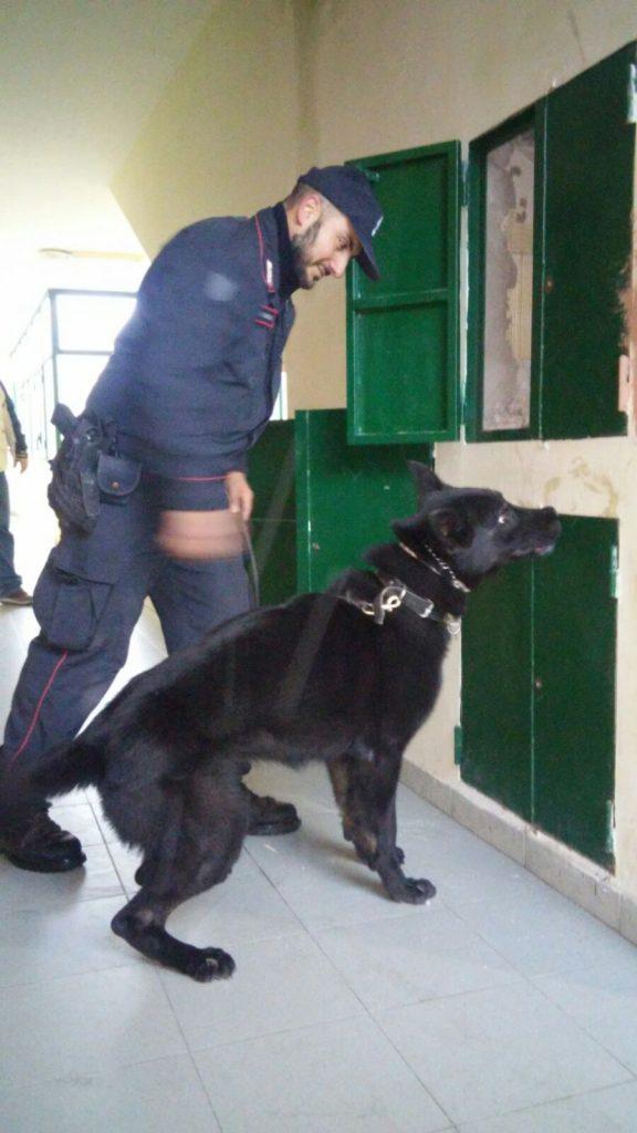 Controlli dei Carabinieri nelle periferie, un arresto, droga e soldi falsi sequestrati.