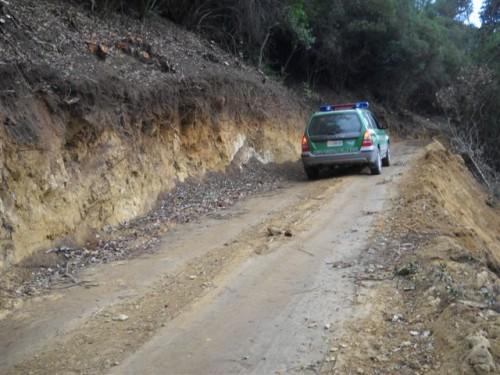 Roccabernarda, la Forestale individua e denuncia attività boschive irregolari
