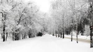 Neve su tutta la Calabria: raggiunte le coste, -11° a Monte Botte Donato