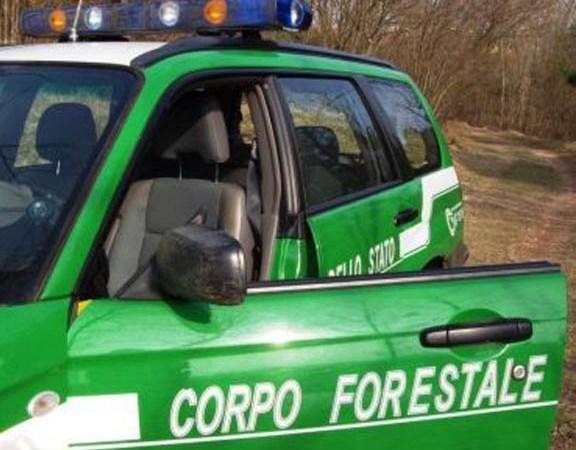 Abusivismo nel Parco nazionale del Pollino: denunce e sequestri a Grisolia