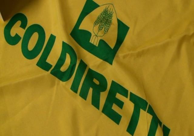 Manifestazione Coldiretti: centinaia di agricoltori a Catanzaro
