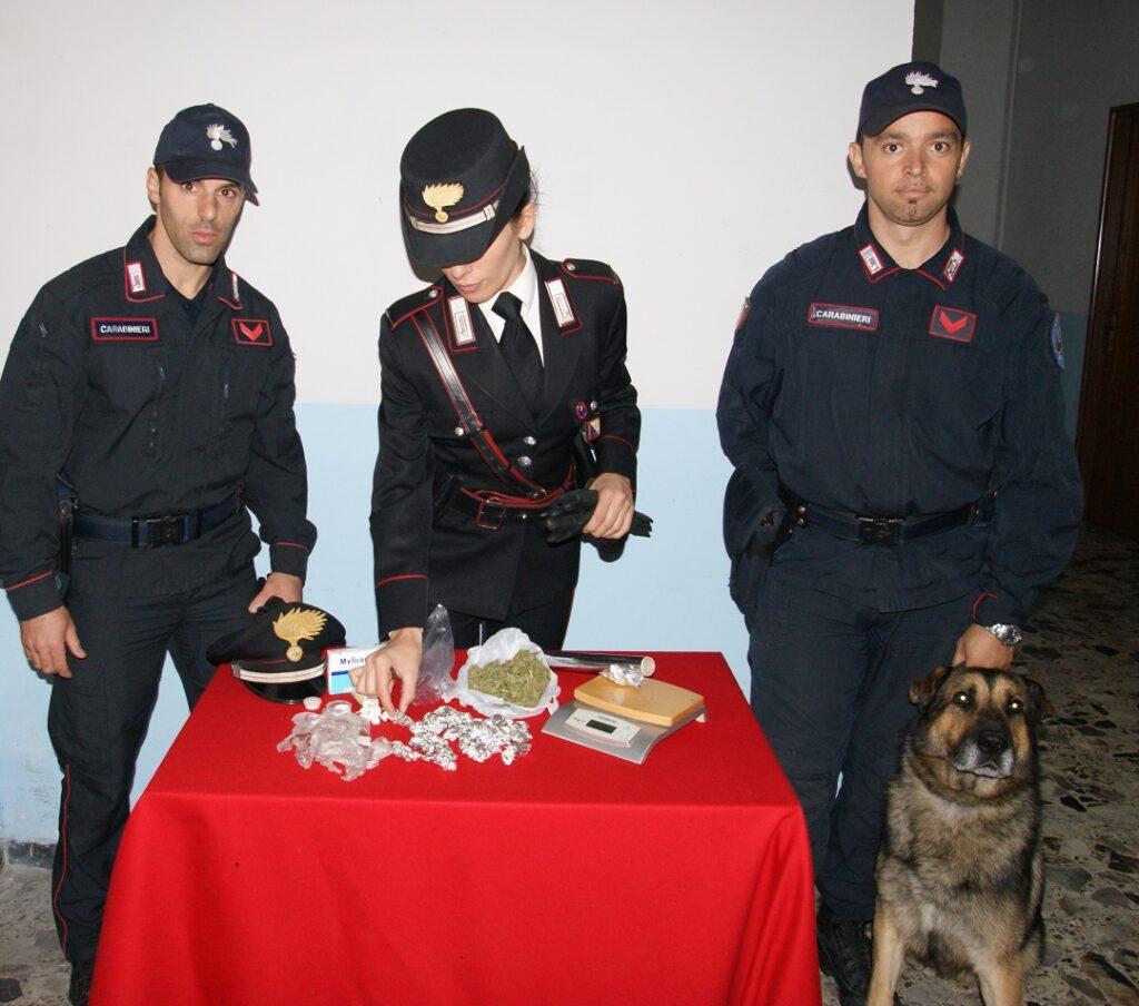 Mesoraca, coppia di conviventi arrestati per droga: ad incastrarli, Ergos, il cane antidroga dei Carabinieri