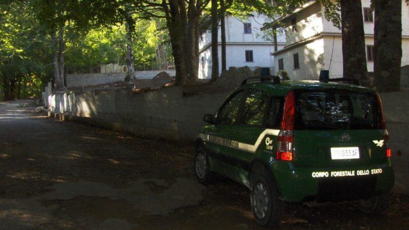 MURI ABUSIVI REALIZZATI A VILLAGGIO FRATTA DI MESORACA
