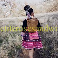 DSC_0513moodyeditthumbnail-2 Hmong Clothes Carolyn Chang
