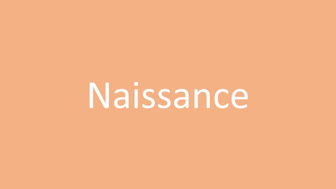 Catégorie Naissance