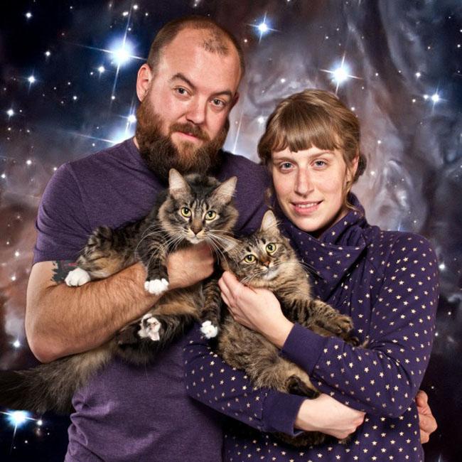Portraits De Famille Comiques Avec Des Chats Petit Petit