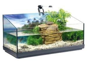 tetra repto aqua set komplettset fuer wasserschildkroeten mit innenfilter heizer