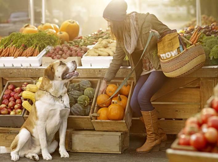 10 Zöldség és gyümölcs, ami jót tesz a kutyádnak