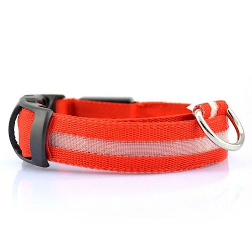 safety dog collar