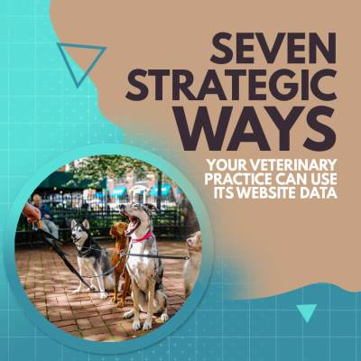 7 Strategic Ways Your Veterinary Practice Can use its Website Data
