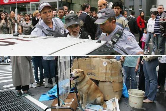 Cachorro ataca policial e causa confusão na Avenida Paulista