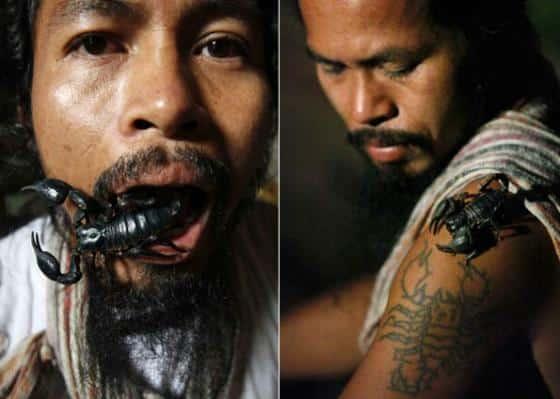 Tailandês mantém mais de 4.600 escorpiões como animais de estimação