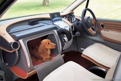 honda-dog-car