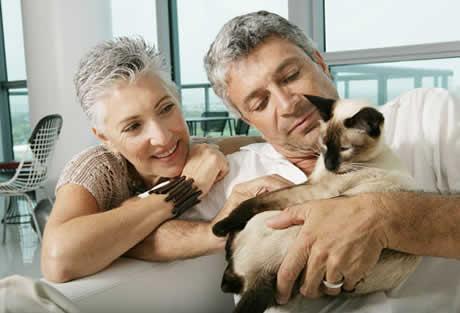 Ter pets fez parte da evolução humana