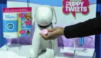 Cachorros não podem falar – mas agora podem twittar abe24ee30c