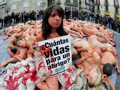 Ativistas tiram a roupa em defesa dos animais na Espanha