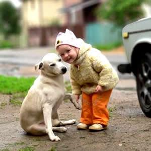 Campanha sensibiliza sobre posse responsável de cães e gatos