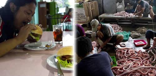 Restaurante na Indonésia vende hambúrguer com carne de cobra