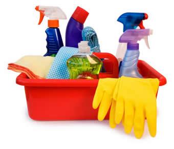 Saiba como usar produtos de limpeza sem intoxicar cães e gatos