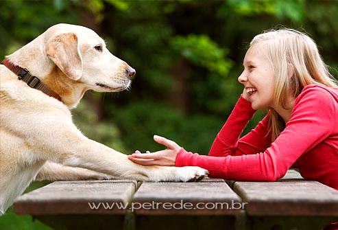 Cães realmente entendem quando estamos falando com eles?
