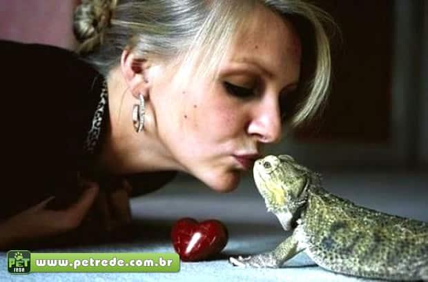 Já pensou em criar um lagarto? Esses bichinhos precisam de cuidados especiais
