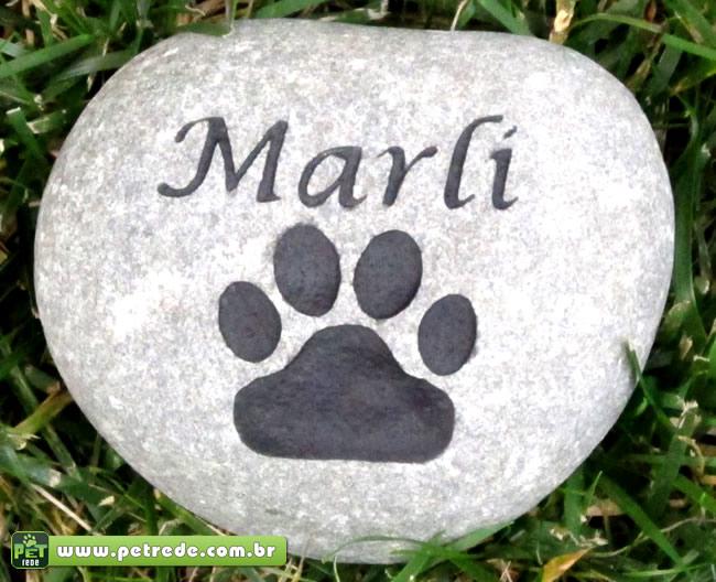 Câmara de SP aprova em 1ª votação enterro de animais em cemitérios
